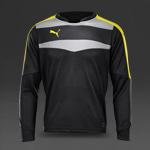 Puma Stadium GK Shirt - Ebony-Pool Green