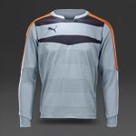 Puma Stadium GK Shirt - Glacier Grey-Ebony